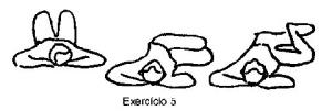 exercicio_5_coluna_vertebral
